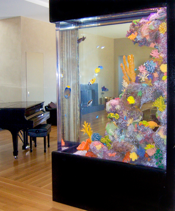 Home Aquarium Design Ideas: Samples Of Salt Water Fish Tanks